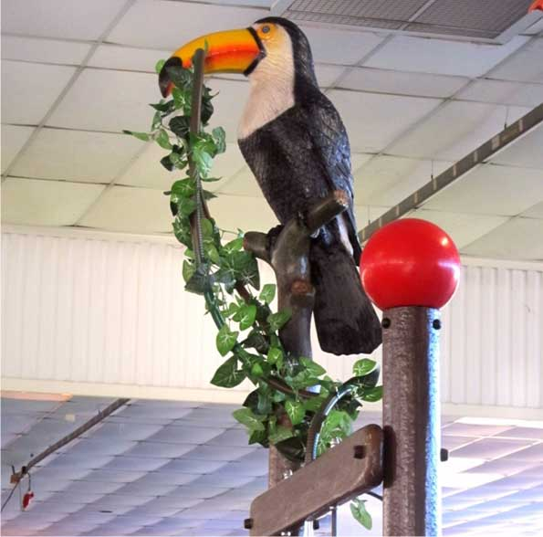 Toucan for tipping bucket